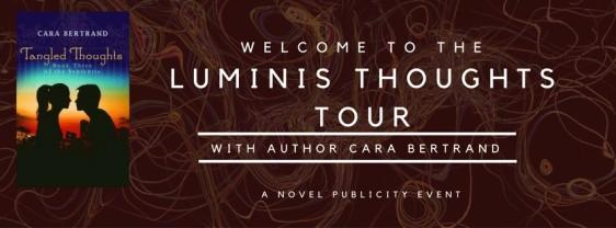 luminis facebook banner (2)